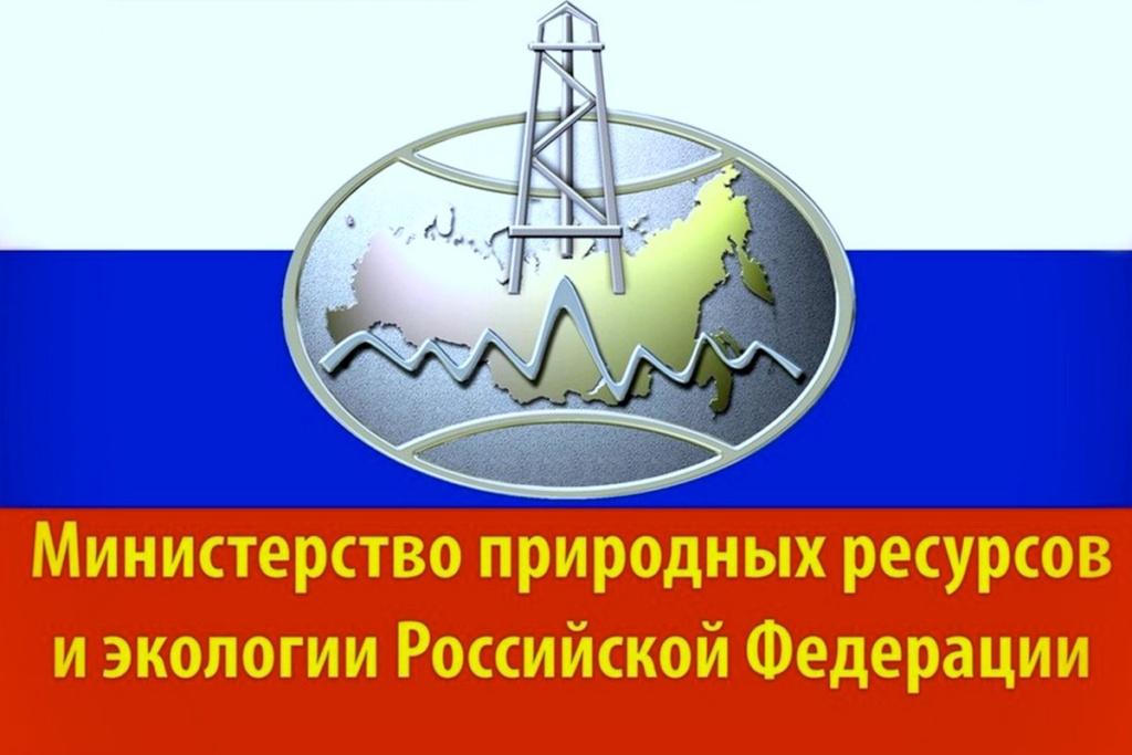 Министерство экологии Российской Федерации разработан проект приказа о нормах, применяемых к лесной декларации